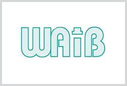 WAIB Logo